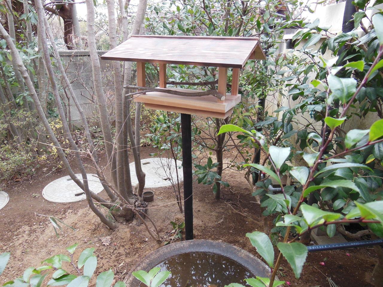 庭に野鳥を呼ぶ、餌台、バードフィーダー、ヒヨド …