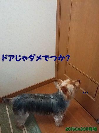 20150430_073257