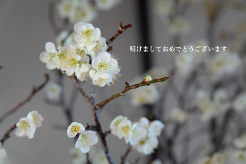 IMG_3030