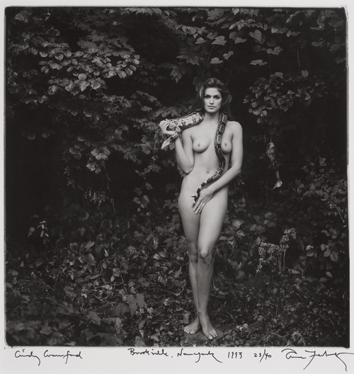 Cindy Crawford Nude - Annie Leibovitz Photoshoot 1993