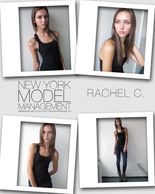 Rachel Cook X2matome PS (3)