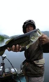 8g24 fukazawa