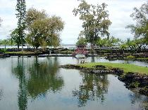リリウオカラ二ガーデン