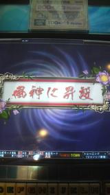 95fc691b.jpg