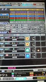 c0b313c2.jpg