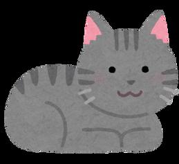 cat_koubakozuwari_gray