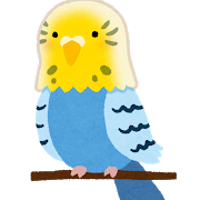 bird_inko_yellow_blue