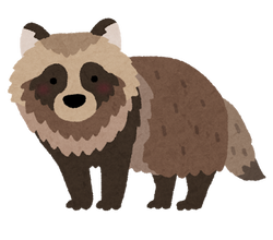 animal_tanuki