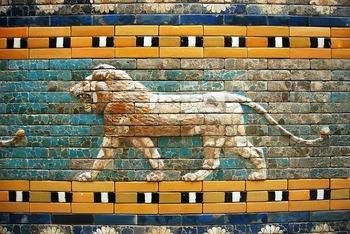 lion-510159_640
