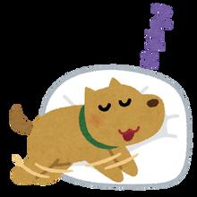 dog_sleep_run