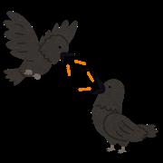 bird_karasu_talk