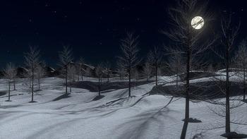 https://pixabay.com/ja/photos/雪-夜-月-寒い-冬-木-642454/