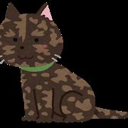cat_sabineko