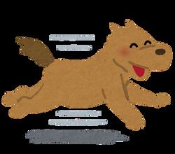 run_dog_smile
