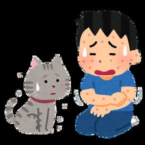 pet_allergy_cat