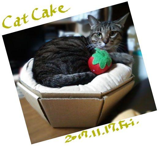 ねこねこカップケーキ2