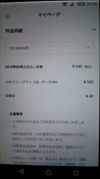 ラインモバイル月額500円 (5)