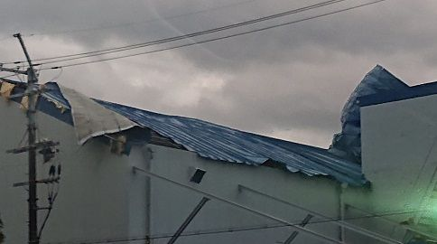 大阪府下各地の台風被害 (3)