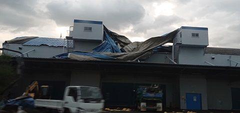 大阪府下各地の台風被害 (4)