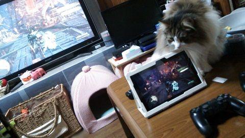 PS4リモートプレイ Xperiaタブレット (2)