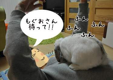 DSC_0010のコピー