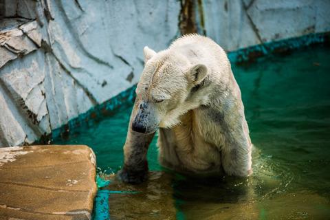 東山動物園-16