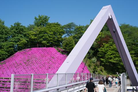 20150505_西山公園-4