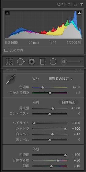 Lightroom5_edit1