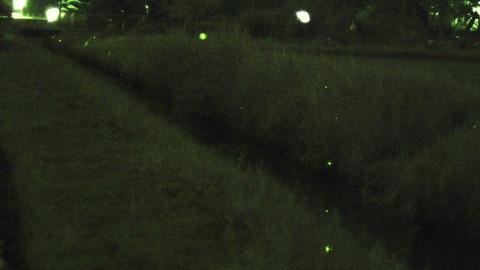 vlcsnap-2018-06-14-09h07m15s043