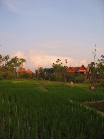 travel_thailand_42