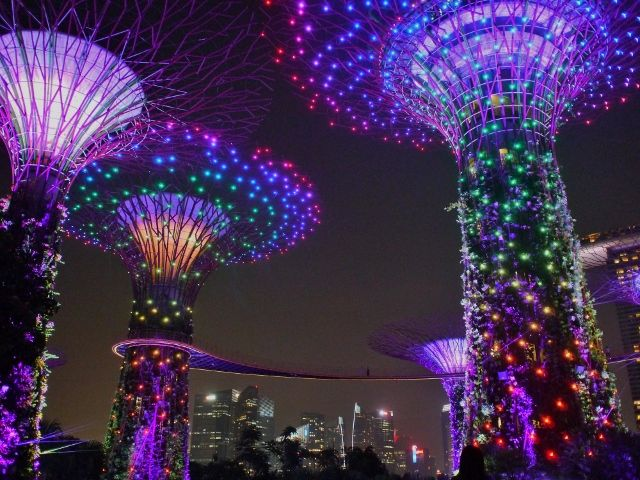 singapore_gardens_05