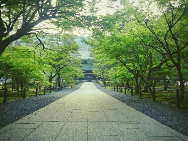run_kyoto_201504_01
