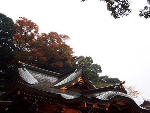 analog_enoshima_03