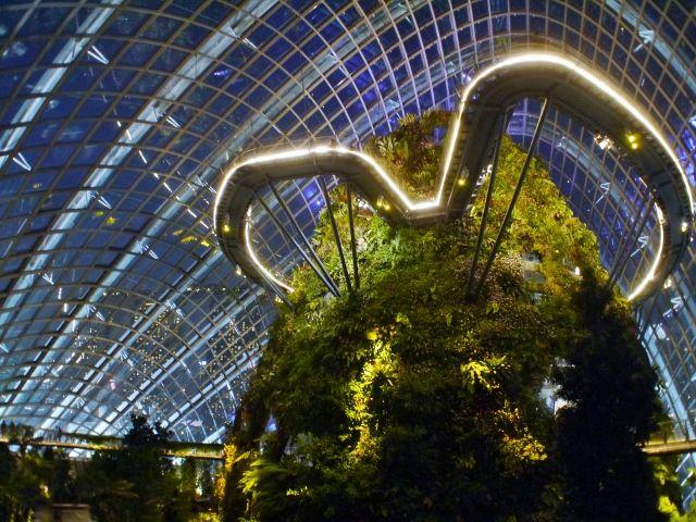 singapore_gardens_03