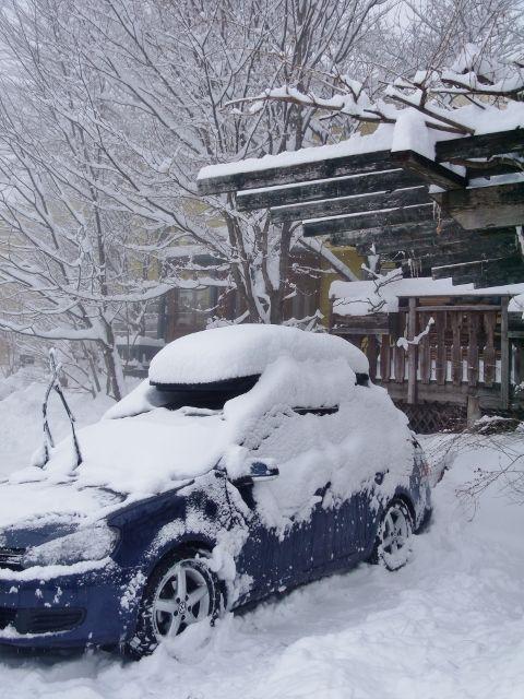 ski_fujimipanorama_01