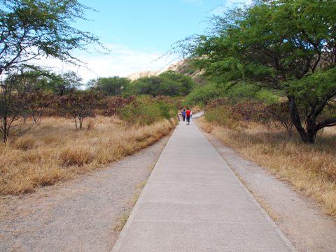 travel_hawaii_diamondhead_trail_01