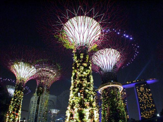 singapore_gardens_04