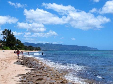 travel_hawaii_north_laniakea_01