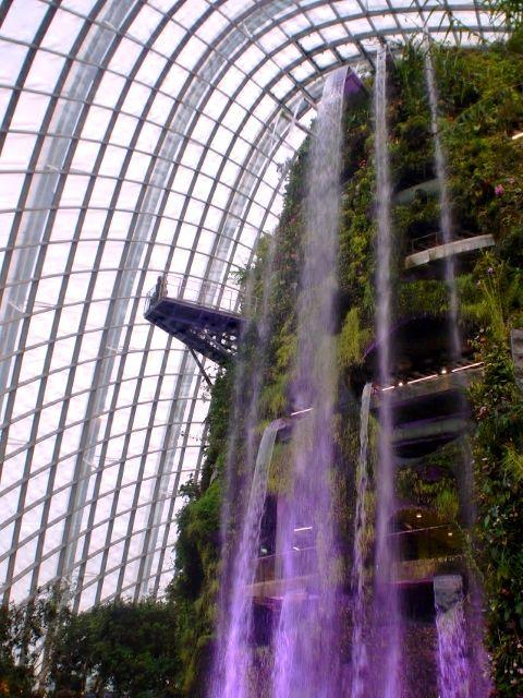 singapore_gardens_02
