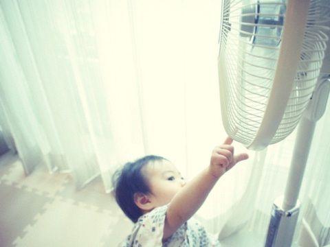 living_fan_baby