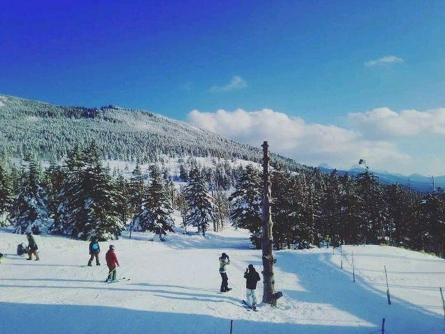 ski_piratasu2018_02
