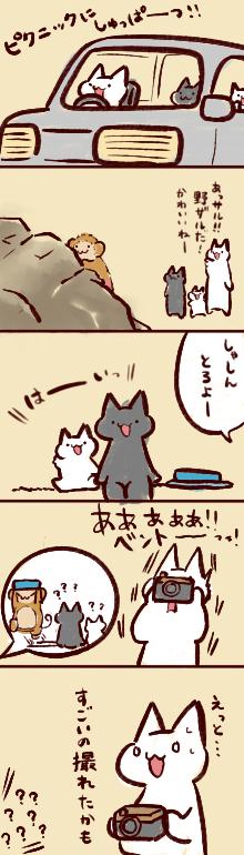 nikki11