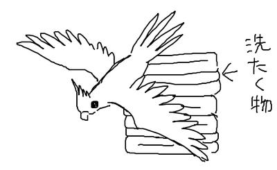 kankon-1549598990-951-490x300