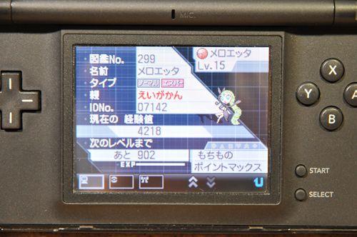 DSC_6049_R.jpg