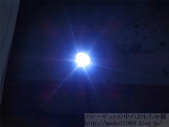 OLY83533_R