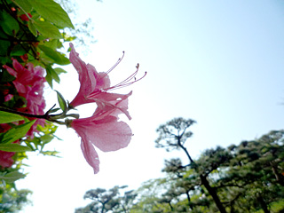 宇都宮八幡山公園で撮影会