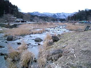 夢木香の河原