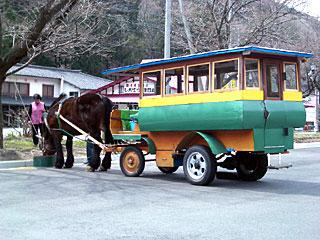 観光トテ馬車