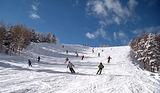 スキーツアー2
