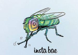 Insta_Bae